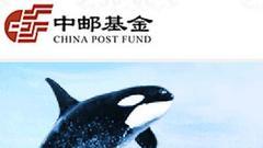 中邮基金紧急开会应对乐视危机:赎回压力或导致连锁反应