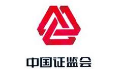 张慎峰重返证监会任主席助理 系稽查总队首任总队长