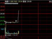 广州公安局称兰世立为诈骗犯 麦趣尔股价狂飙10%