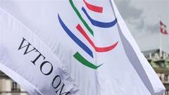 中国驻WTO大使:考虑就特朗普关税计划向WTO申诉