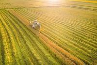 中央发文做好三农工作:确保2020年农村人居环境改善