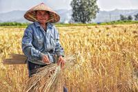 韩长赋:去年农村居民人均可支配收入近1.5万元