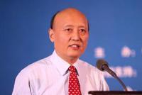 国家十三五规划专家委员会秘书长杜平