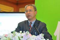 清华大学建筑学院城市规划系教授顾朝林