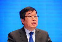 国家发展改革委国际合作中心学术委员会主任曹文炼