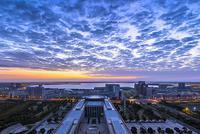 上海自贸临港新片区今揭牌 中国对世界承诺如期而至