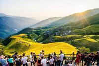 国办:到2022年文化和旅游市场秩序得到进一步规范