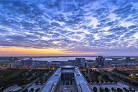 逐条解读 上海自贸区临港新片区特殊支持政策50条