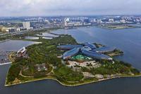 陈寅:临港新片区税收支持等政策还需制定实施细则