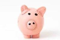专家:猪价虽有快速上涨空间 年内CPI破3的概率很小