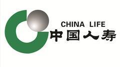 中国人寿原保费增速落后行业平均  市占七年缩水四成