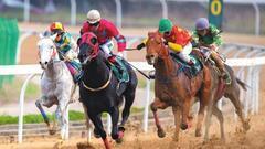 海南将鼓励发展赛马运动等项目 赛马概念股受关注