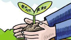 中国保护知识产权态度坚定成效明显