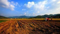 详解土管法修改:农地入市扫清障碍 政府六情形可征地