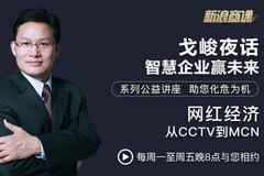 戈峻夜话第18期|网红经济:从CCTV到MCN