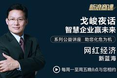 戈峻夜话第19期|网红经济新蓝海