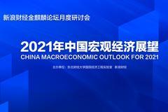 2021年中國宏觀經濟形勢分析與預測報告發布(全文)