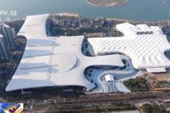 海南:消博會首批空港進境奢侈展品順利通關 貨值約196.7萬港元
