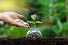 易綱:扎實推動綠色金融發展 建立氣候環境信息披露制度