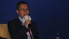 杨平:进行风险化解要考虑一些产品和工具
