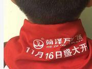 红领巾印广告事件:菏泽万达广场总经理等3人被解聘