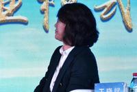 王晓斌:文旅项目要有一点住宅配比 以平衡前期投资