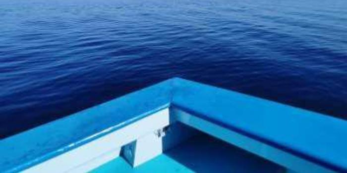 中金:太平洋航運維持跑贏行業評級 目標價2.08港元