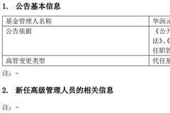 华润元大董事长邹新无法继续履职 总经理李仆代任