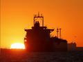 """特朗普批评油价被""""人为""""推高 OPEC矢口否认"""