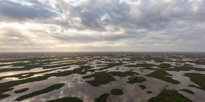 特朗普计划撤销奥巴马时期的清洁水法案