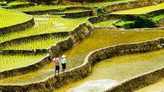 中央农办韩俊:乡村振兴不是造一些典型就收官交账的