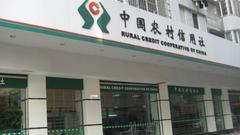 韩俊:一号文件对农村信用社的改革提了非常重要要求