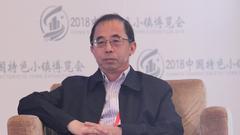 刘士林:特色小镇建设要有耐心和信心 容忍问题发生