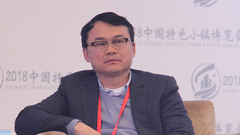 蔡鸿文:建设特色小镇要把文化价值和产业导入