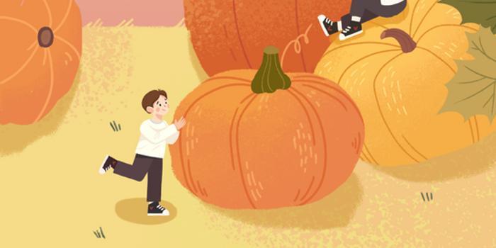 """宁德福安:金色画卷中的"""""""