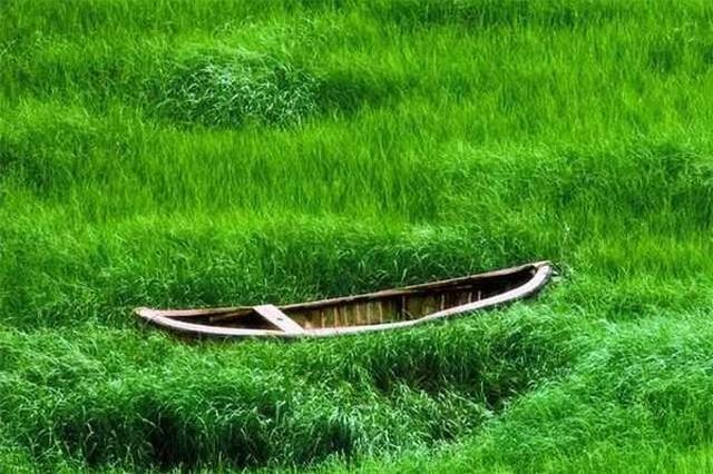 霞浦一个迷人又诗意的旅游天堂