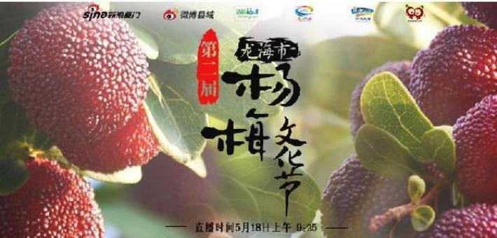 直播:龙海市第二届杨梅文化节激情开幕