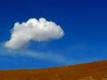 禅修天地:空中一片云