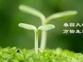 """春季养生注意""""三多三少"""""""