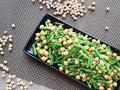 素食养生:芦笋鹰嘴豆