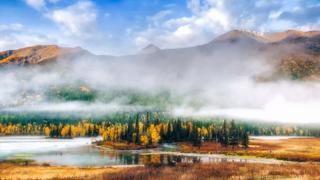 新疆的秋一草一木皆風景