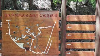 漫步遵義鳳凰山公園