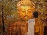 什么是佛陀的四意趣和四秘密
