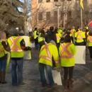 加拿大至少8城現黃背心抗議 大罵總理是叛徒(圖)