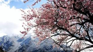 如果你对西藏的印象只是蓝天、白云和雪山