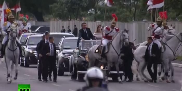 """巴西新总统宣誓就职 一匹受惊白马""""阻拦""""车队"""