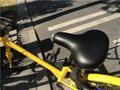 男子骑共享单车屁股被烫伤 向保险霸气索赔93元