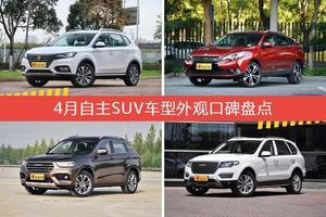 荣威eRX5新能源/启辰T90等,4月自主SUV车型外观口碑汇总