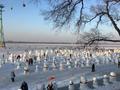 来哈尔滨旅游看雪人盛宴,太可爱了,太漂亮