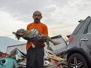 印尼强震引发海啸致数百人死 海滩上遗体随处可见